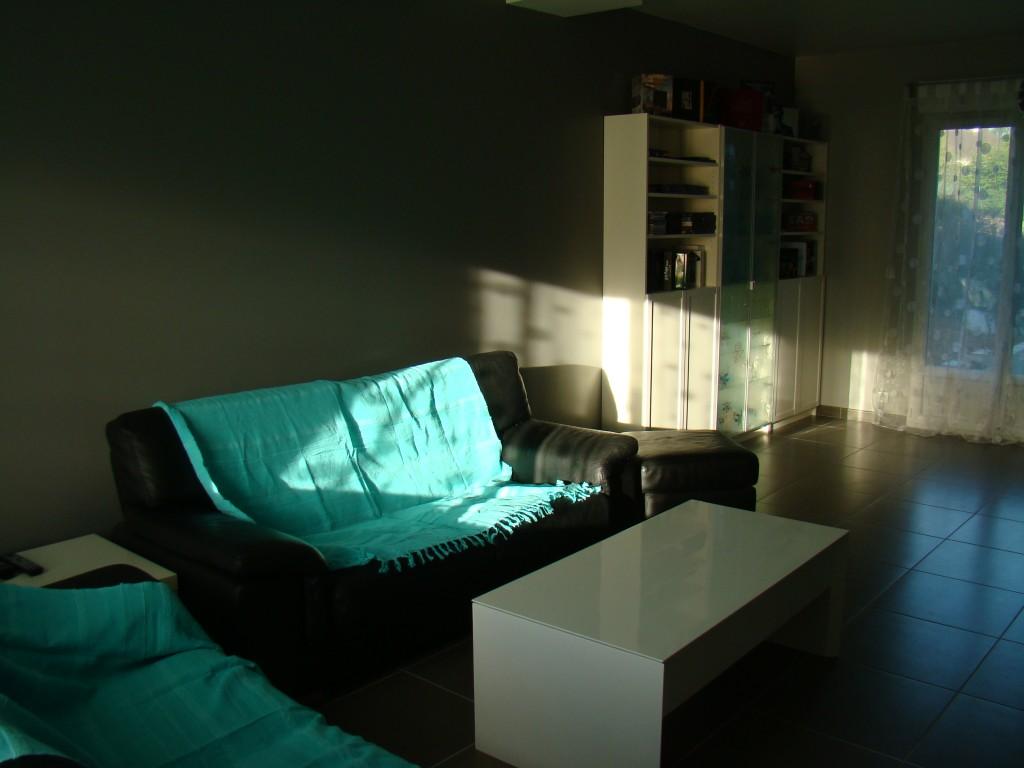 Le salon la grande maison sur le plateau for Meuble tele fin